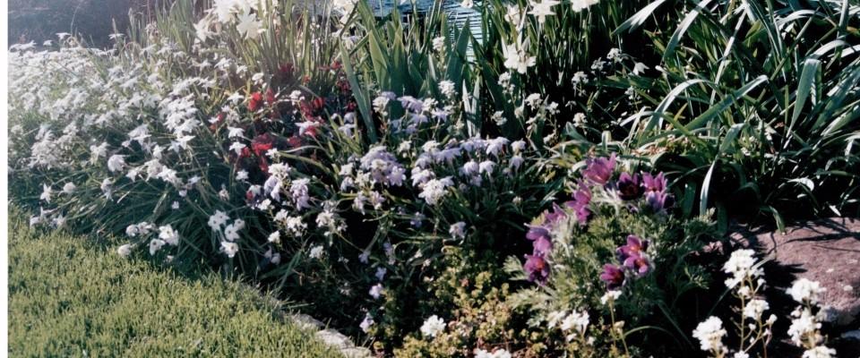 Kundengarten6-960x400_c
